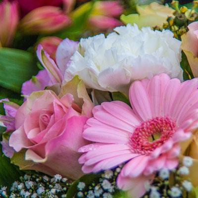 Florist / Blumen